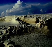 Sand Gators... Scurge of the New World by J Avary Vox