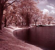 Infrared at Cyberjaya 4 by zoule