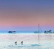 Dunwich Dawn - North Stradbroke Is. Qld Australia by Beth  Wode