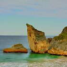 Cathedral Rock, Windy Harbour, Western Australia by Elaine Teague