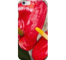 red lily iPhone Case/Skin