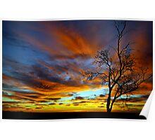 Australian Sunrise Poster
