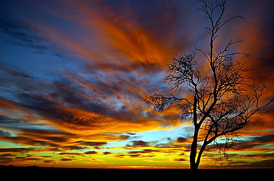 Australian Sunrise by Matt Harvey