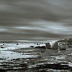 Saltwick Bay by spemj