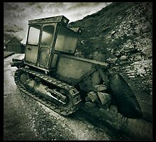 The Digger by Alex Worsley