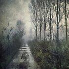 Fog on the Bridleway by Sarah Jarrett