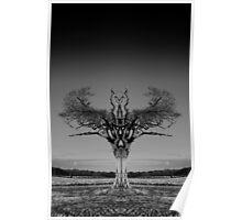 The Rihanna Tree Symmetry Poster