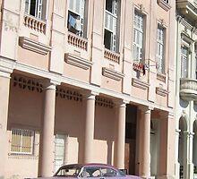 Havana pink by sarahcro123