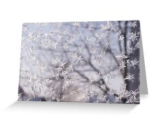 Frosted glass 3 Greeting Card
