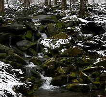 Snowy Appalachian Creek by Gary L   Suddath