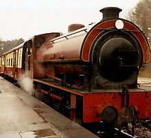 Haiverthwaite Steam Train by georgiegirl