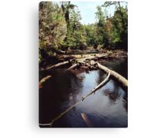 Styx River Canvas Print