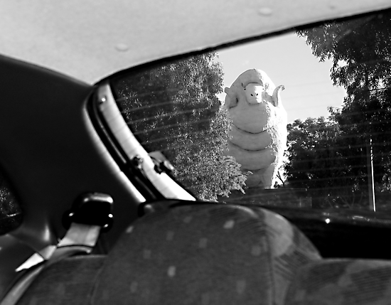 Giant Ram by GCPhoto