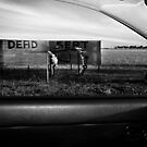 Dead Sert by GCPhoto