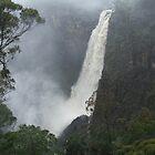 Dangars Falls by Karly Morris