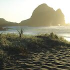 Wild Beach Piha (Auckland, NZ) by chOcOlateBubble