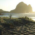 Wild Beach Piha (Auckland, NZ) by chOcOlateBubble