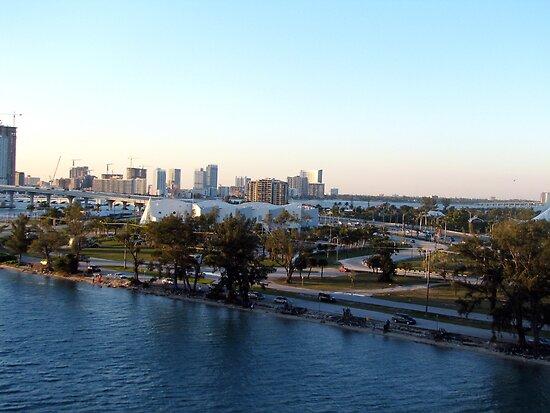 Miami Florida by Xarran