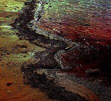 lake shore by Carolyn
