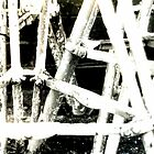Scafolding poles by Tracey Hudd