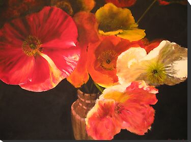Sunlit Poppies by spike