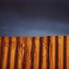 Iron Fence at Sunset by Erica Corr