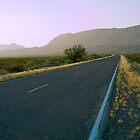 Park Road - Big Bend National Park by cfu123