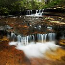 Blue Mountains by Will Barton