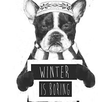 Winter is boring by soltib
