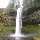 silver falls by Deborah Duvall