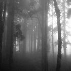 Wood Of Pines by Joydeep