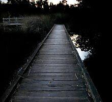 Board Walk on the Wetlands by Michael Humphrys