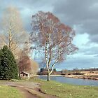 River Tweed by blod