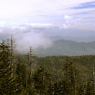 Low Clouds Over The Smokys by Gary L   Suddath