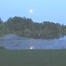 evening moon reflections  by francelle  huffman