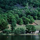 Canoist at Nab Cottage end of Rydal Water Lake District England 198405200021 by Fred Mitchell