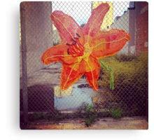 Yarn Art Flower in East Harlem, New York City Canvas Print