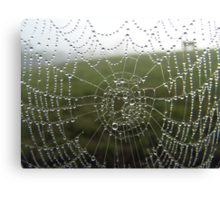 diamonds on a web Canvas Print