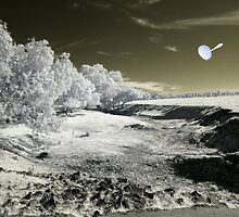 Luna Landscape by lightsmith