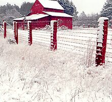 southern snow by J.K. York