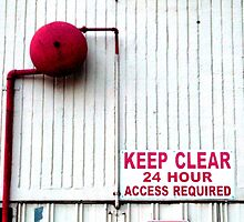 """24 Hour Access"" by Coralie Alison"