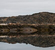 Wilderness Reflection by Marylou Badeaux