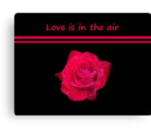 Rose Radtko - Love is in the air (I) Canvas Print