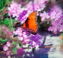 Orange Butterfly by DigitalMuse