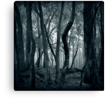 Lost Within Canvas Print