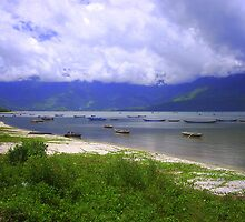 Vietnam  by peterfrench