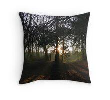Sunset darlington park Throw Pillow