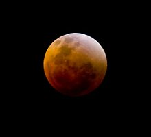 Lunar Eclipse 2 by Mark Snelson