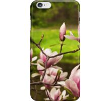 Blooming Magnolia Tree Close-up iPhone Case/Skin