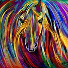 Rainbow Warrior by saleire